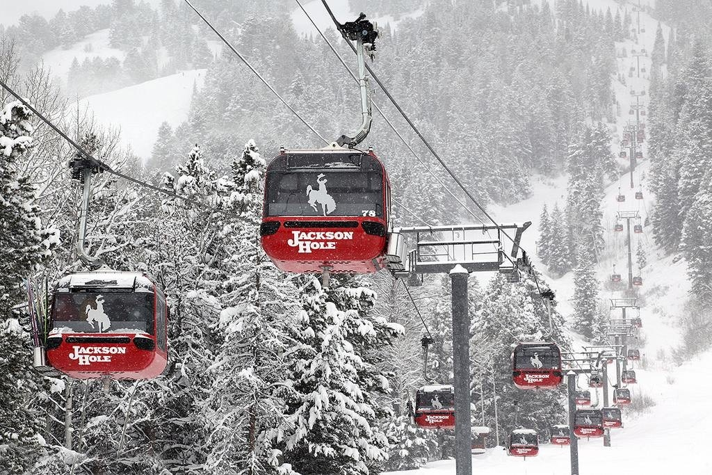 New Gondola, Wildlife Viewing At Jackson Hole