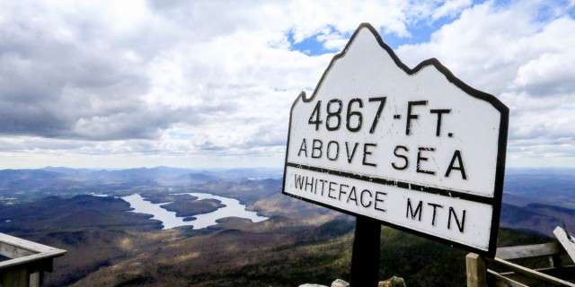 Whiteface-sign