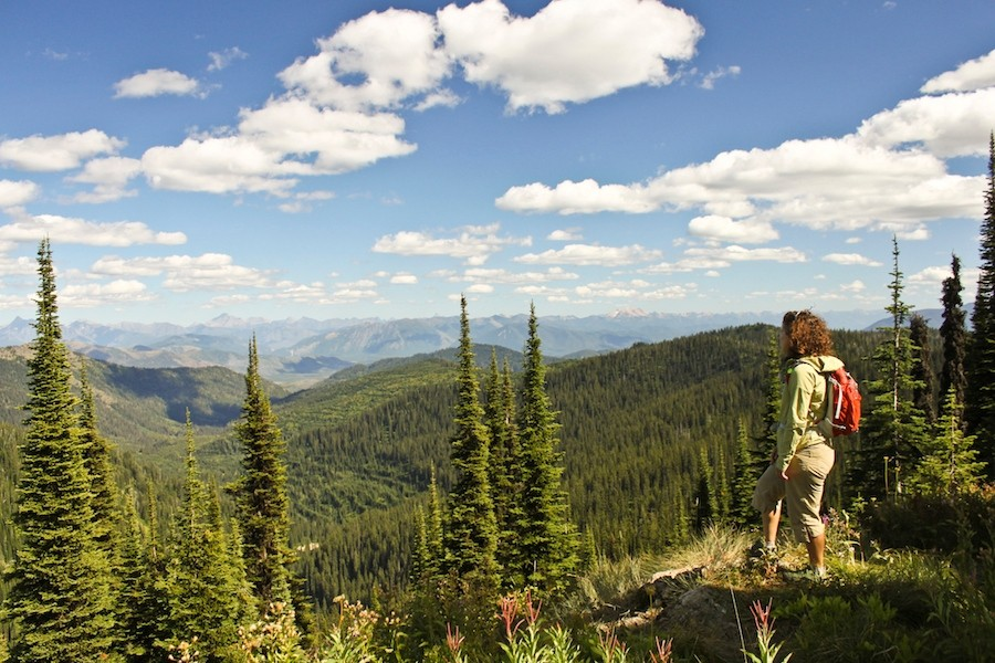 One of the most relaxing and rewarding fall mountain experiences is taking a hike. (Whitefish)